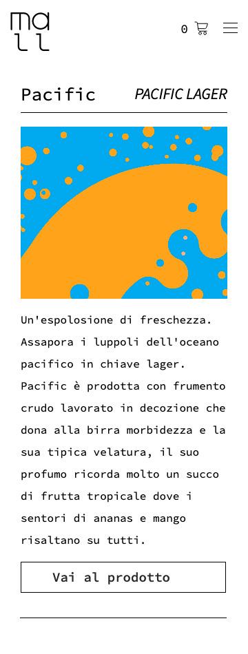 Sito web responsive a Venezia